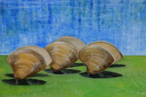 Three Clam Shells Realism