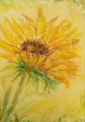"Sunflower, 5"" x 7"""