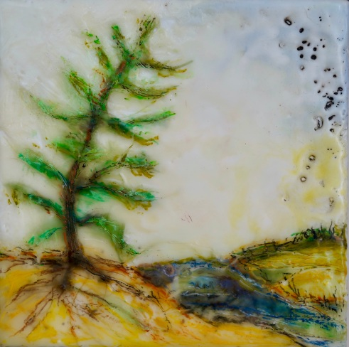 """The Lonely Pine, 5"""" x 5"""""""